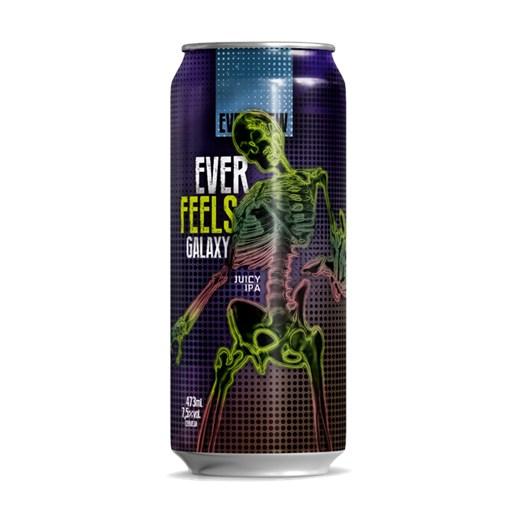 Cerveja EverBrew Ever Feels Galaxy, 473ml