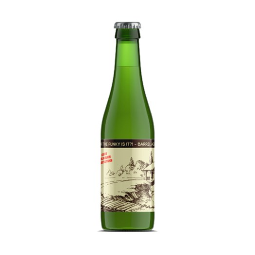 Cerveja Joy Project Brewing What the Funk Is It, 375ml